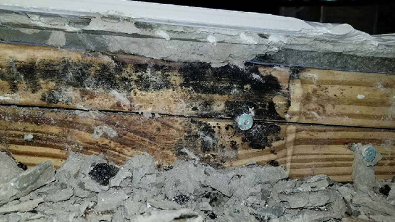 Botched remodel leaves behind mistakes, mold