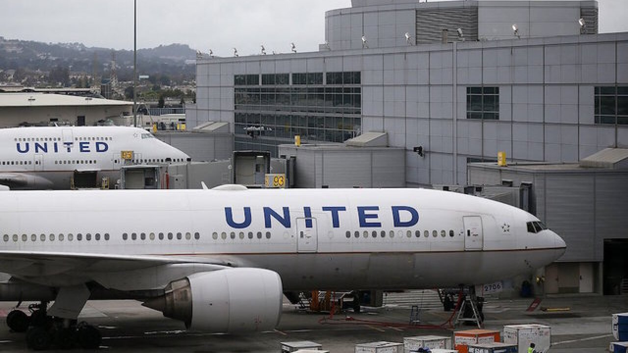 Dog ordered to be put inside overhead bin United flight did not survive
