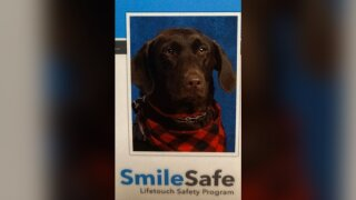A very good service dog scored a spot in her Arkansas elementary school yearbook