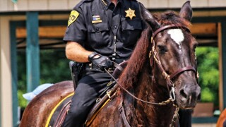 Former Erie Co. Sheriff's Office Mounted Patrol horse who worked over 140 Buffalo Bills games, dies