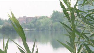 air quality sloans lake.jpg