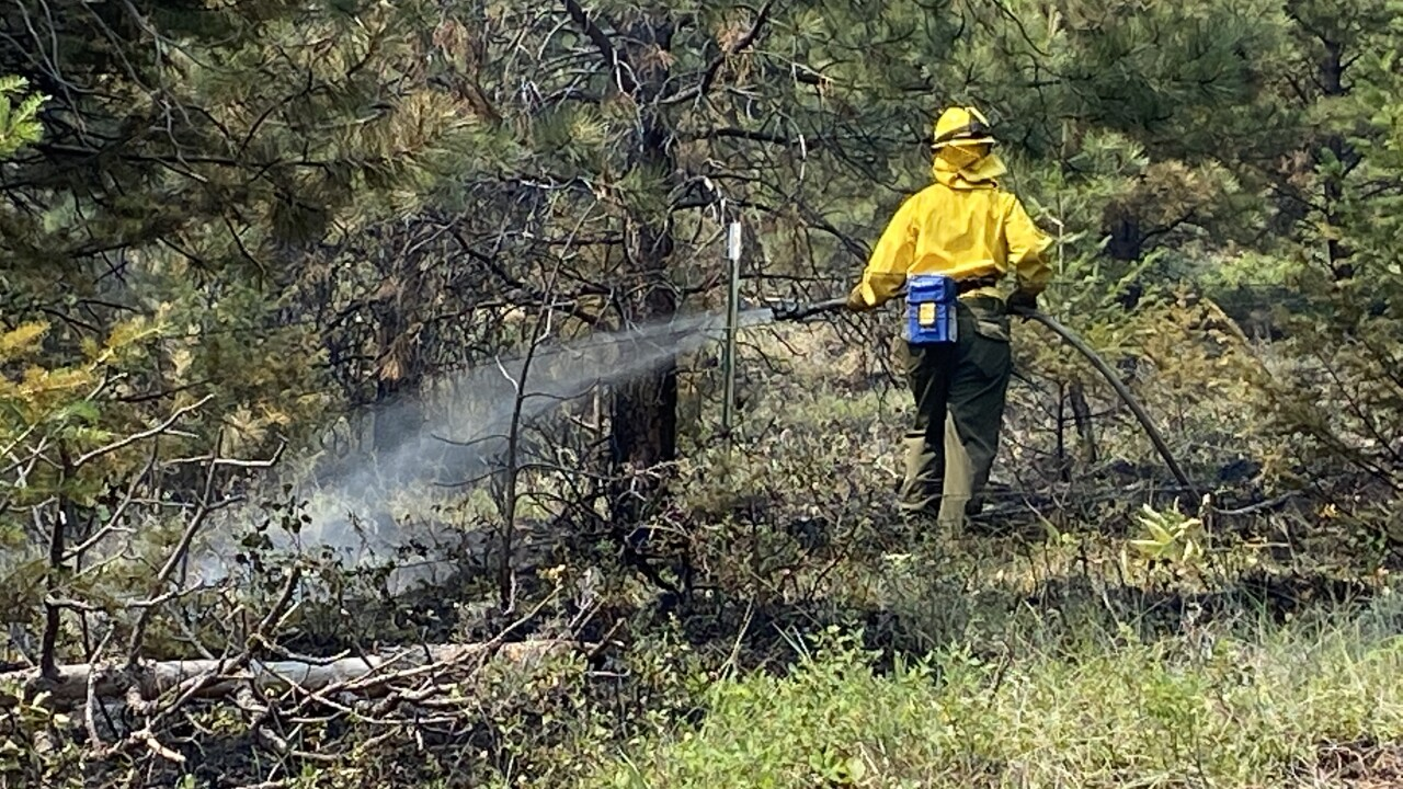 Fire reported near Grizzly Gulch Thursday morning
