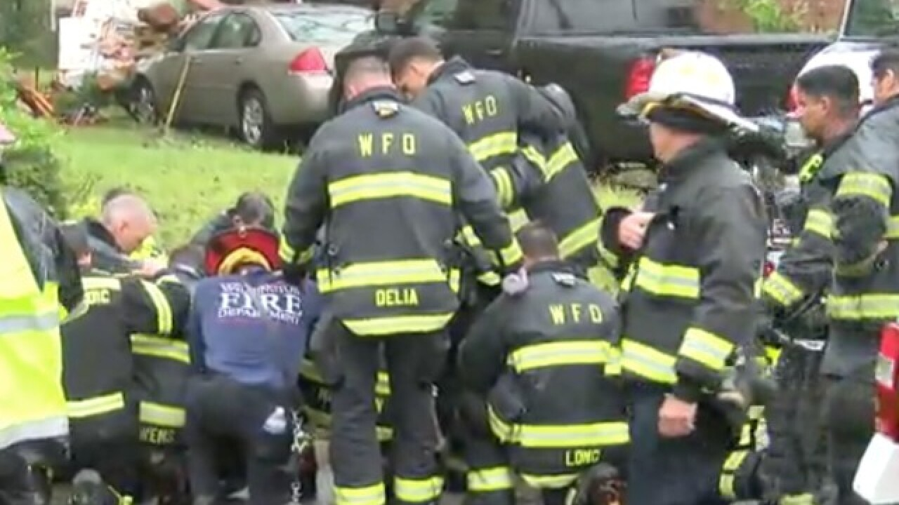 Firefighters kneel, pray after mother and baby die from falling tree during Florence