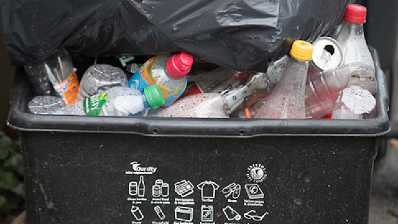 Hillsborough, Pinellas are great at recycling