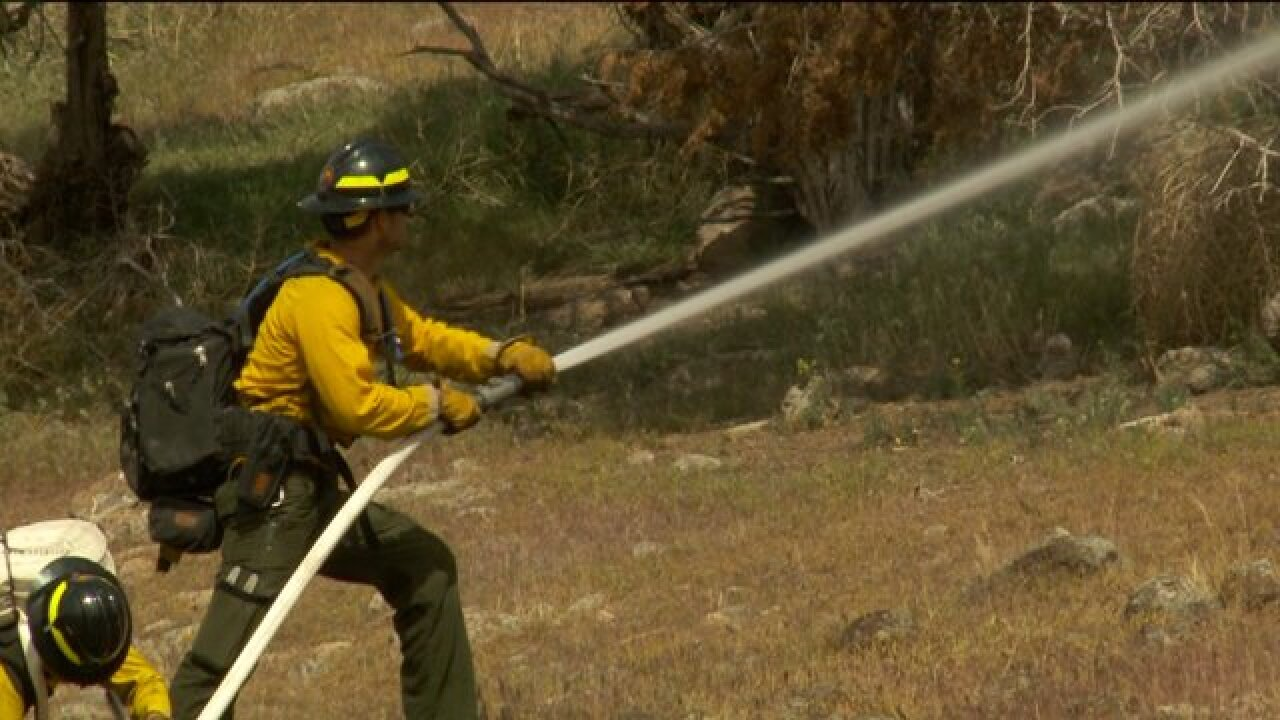 Crews train to fight wildfires