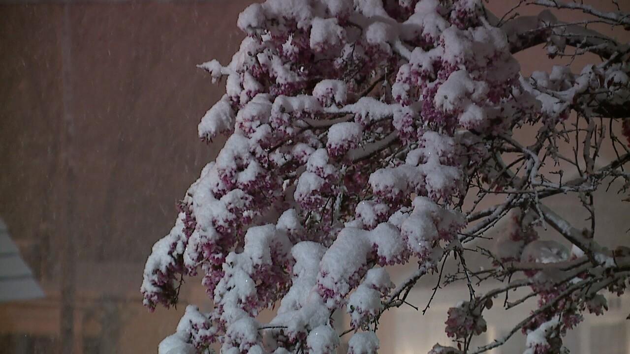 North Royalton snow 3.jpg