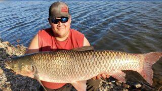 Southern Colorado man reels in giant carp