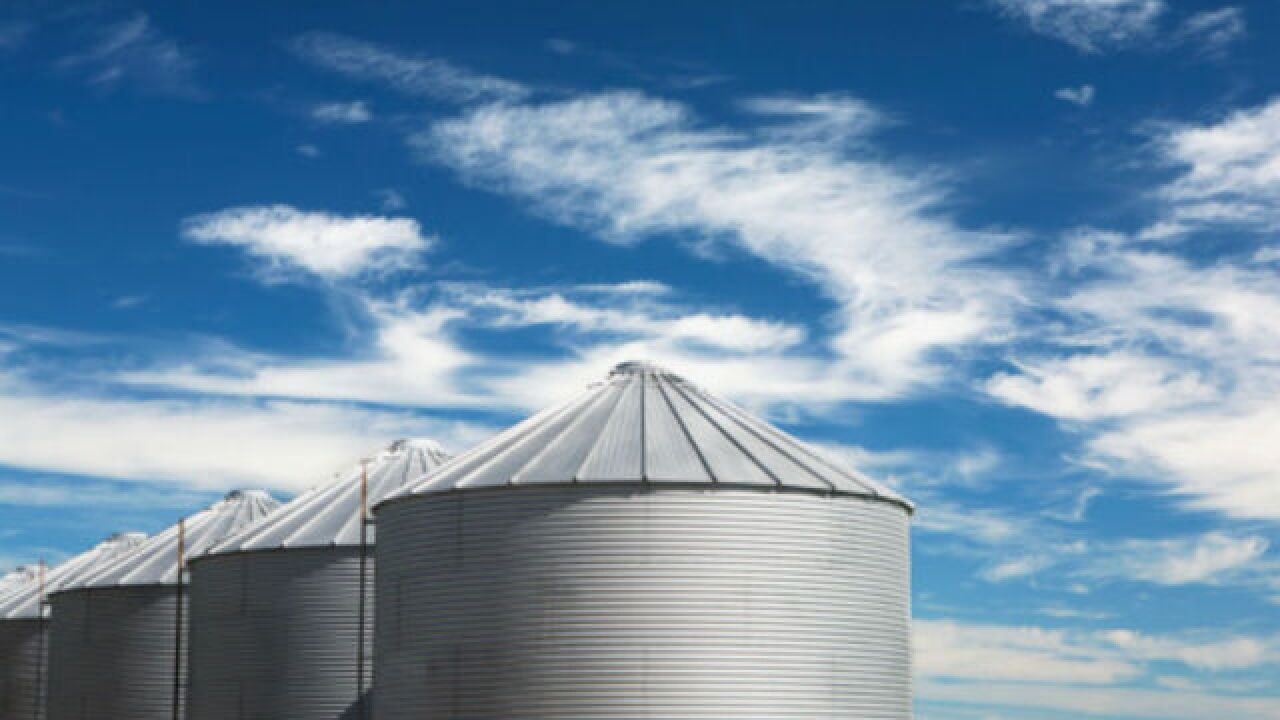 Indiana farmers may struggle with grain storage amid forecast of high yields and lingering tariffs