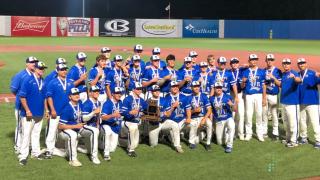 Liberty HS baseball wins state