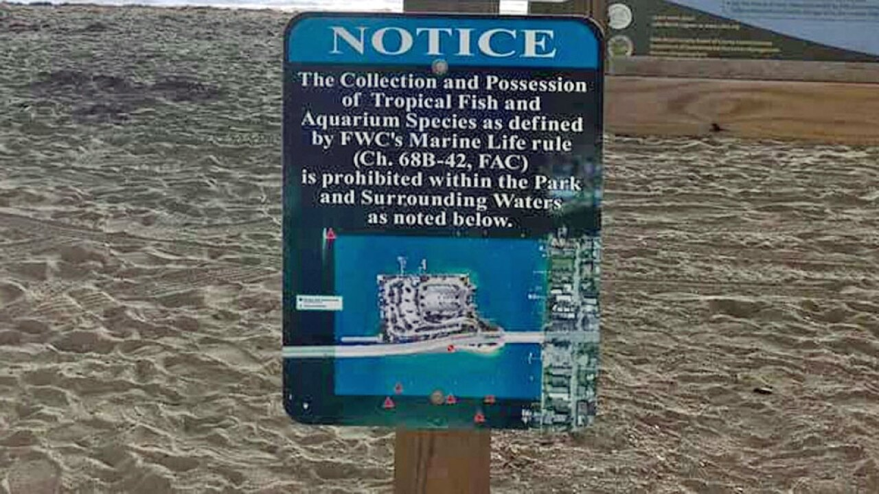 wptv-tropical-fish-collection-sign-.jpg