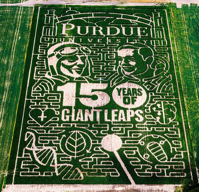 purdue corn maze.jpg