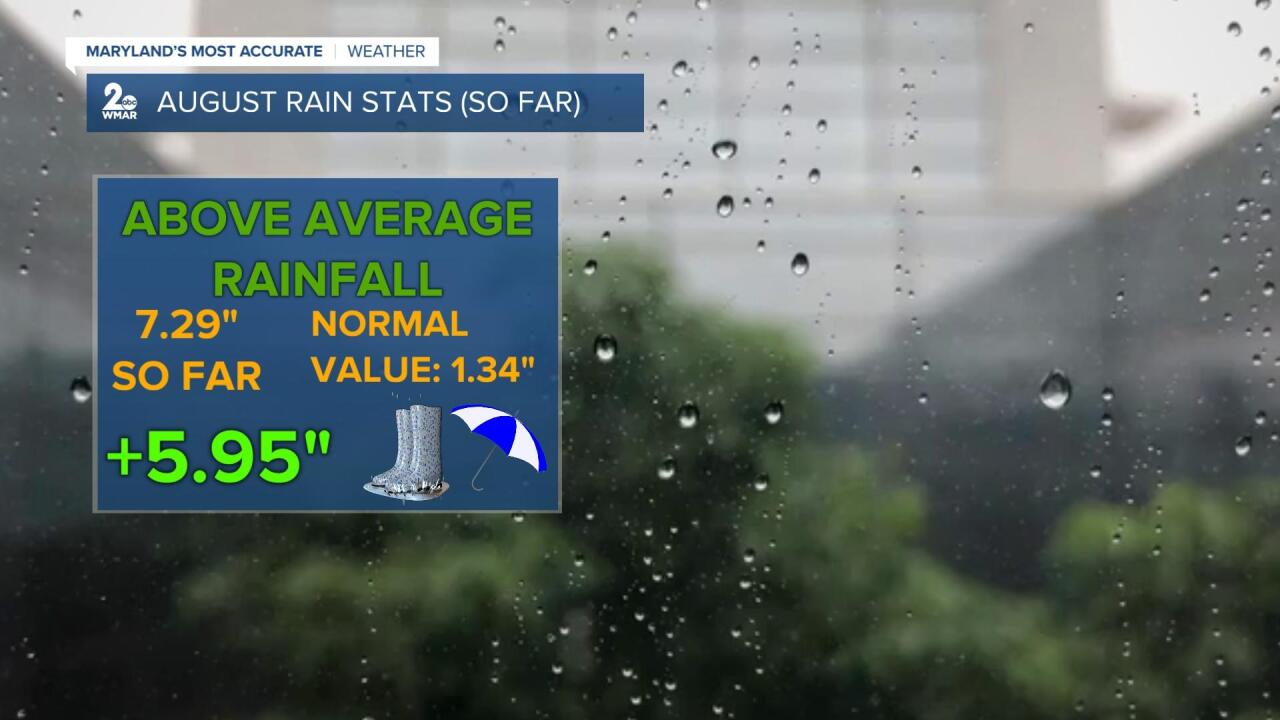 August Rain.jpg
