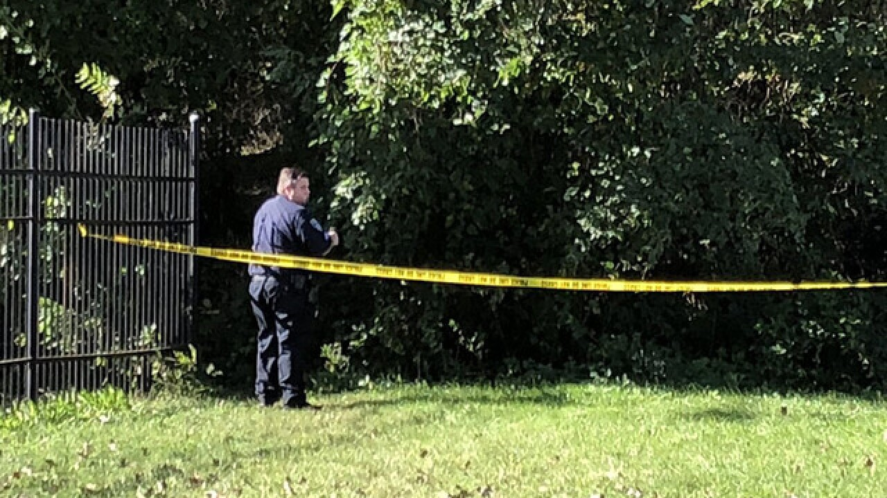 Man shot in wooded area in West Baltimore