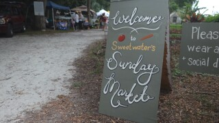 Sweetwater Organic Community Farm, Town 'n' Country