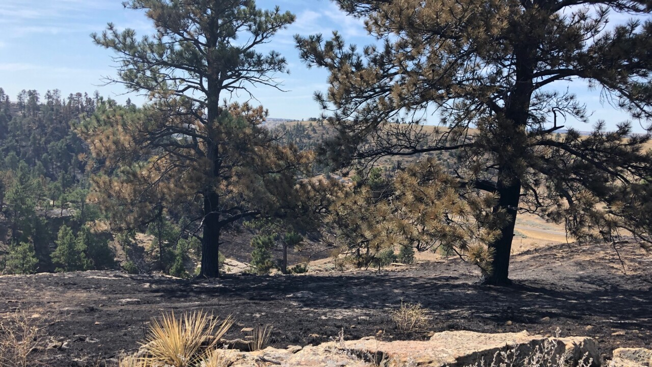 Scorched ground from the Mountain View fire taken 9-2-19