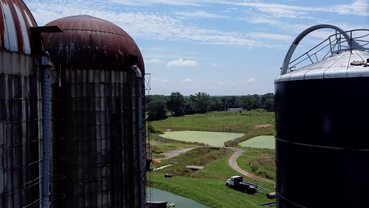 Denver Downs has been a cotton farm, dairy farm and is now a general farm, growing different crops and livestock. That's no longer the only source of income, though, as agritourism has become a major focus.