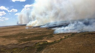 NIFC: Campers likely started massive Nevada wildfire