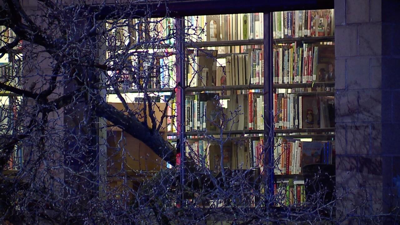 Tree into library 2.jpg
