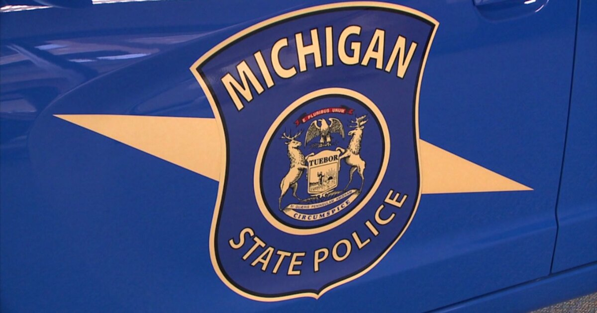 MSP: Man stabbed wife, led police on chase in northern MI