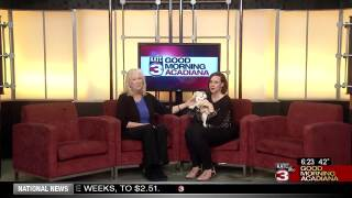 Acadiana Animal Aid Fundraiser