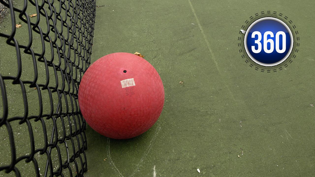 dodgeball360.png
