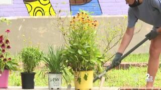 United Way of Central Maryland volunteers beautify Ben Franklin High School
