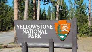 Yellowstone park officials to set up checkpoints