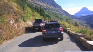 Multiple Glacier National Park incidents prompt safety reminder