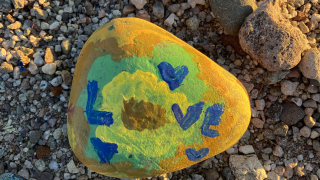 Rocks painted by family and delivered to neighbors to uplift community