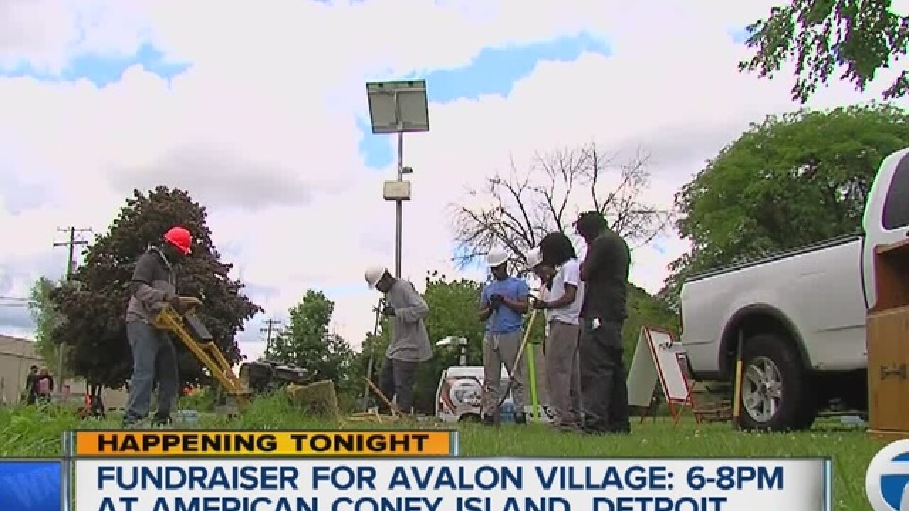 Avalon Village Fundraiser