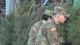Trees for Troops provides free Christmas trees for junior enlisted soldiers