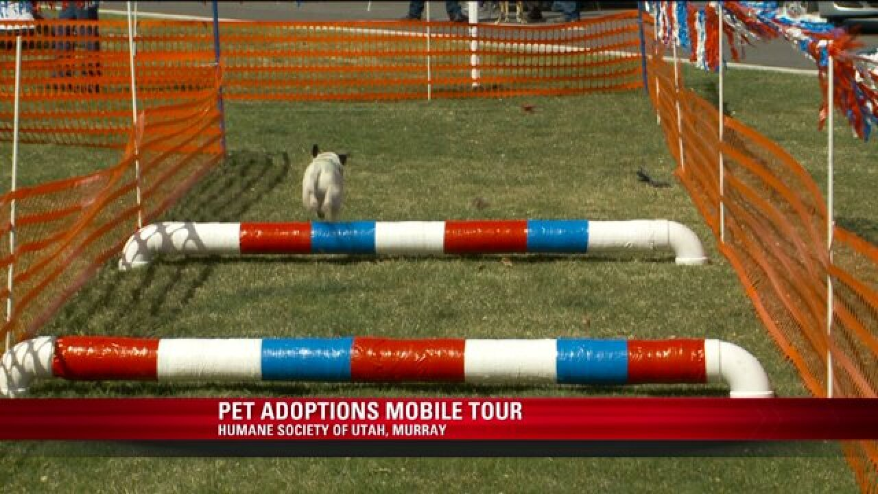 Activities, discount dog adoptions available as mobile 'Tour for Life' stops in Utah