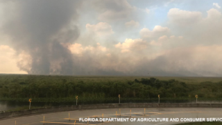 Lightning sparks wildfire in the Everglades, burning 17,000 acres.png