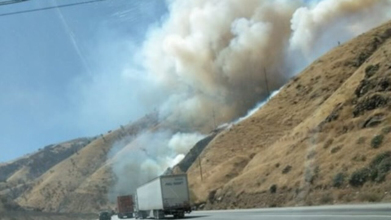Vegetation fire on SB I-5 south of Grapevine Rd.