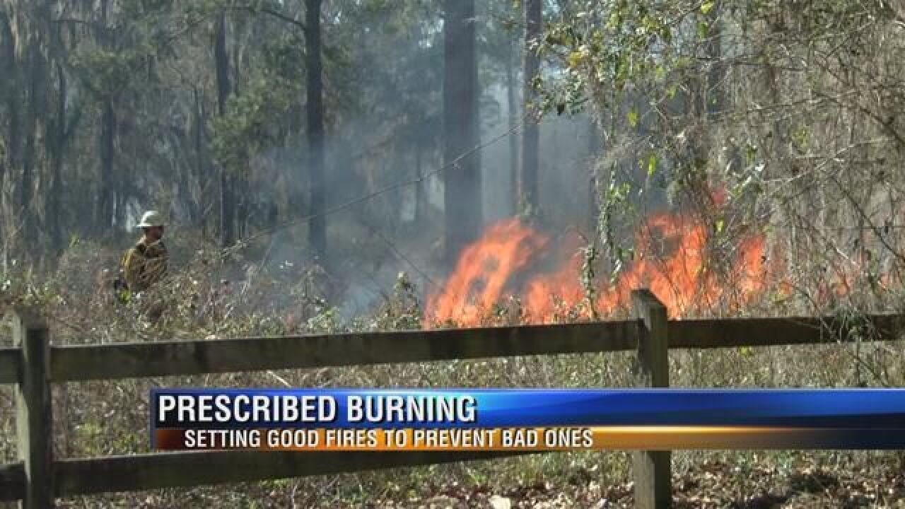 A Prescribed Burning a Day Keeps the Wildfire Away