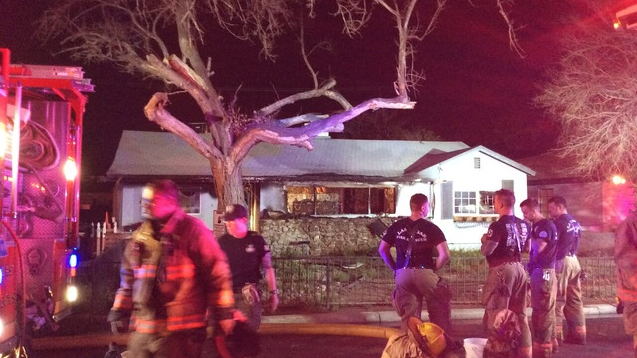 3 cats killed in overnight fire