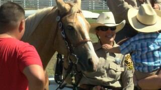 SLO County Sheriff's Family Day