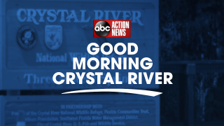 good morning crystal river