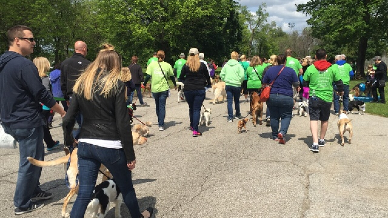 PHOTOS: Indy Humane Mutt Strut