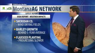 Montana Ag Network Weather: June 11th