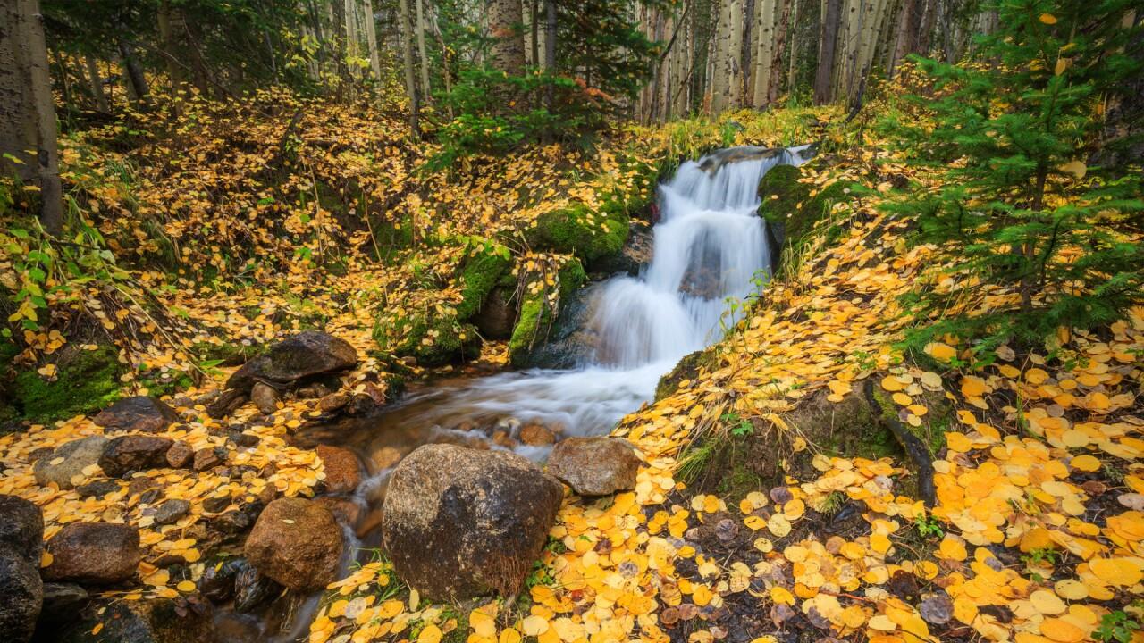 Rocky Mountain National Park Tom Mangan 2.jpg