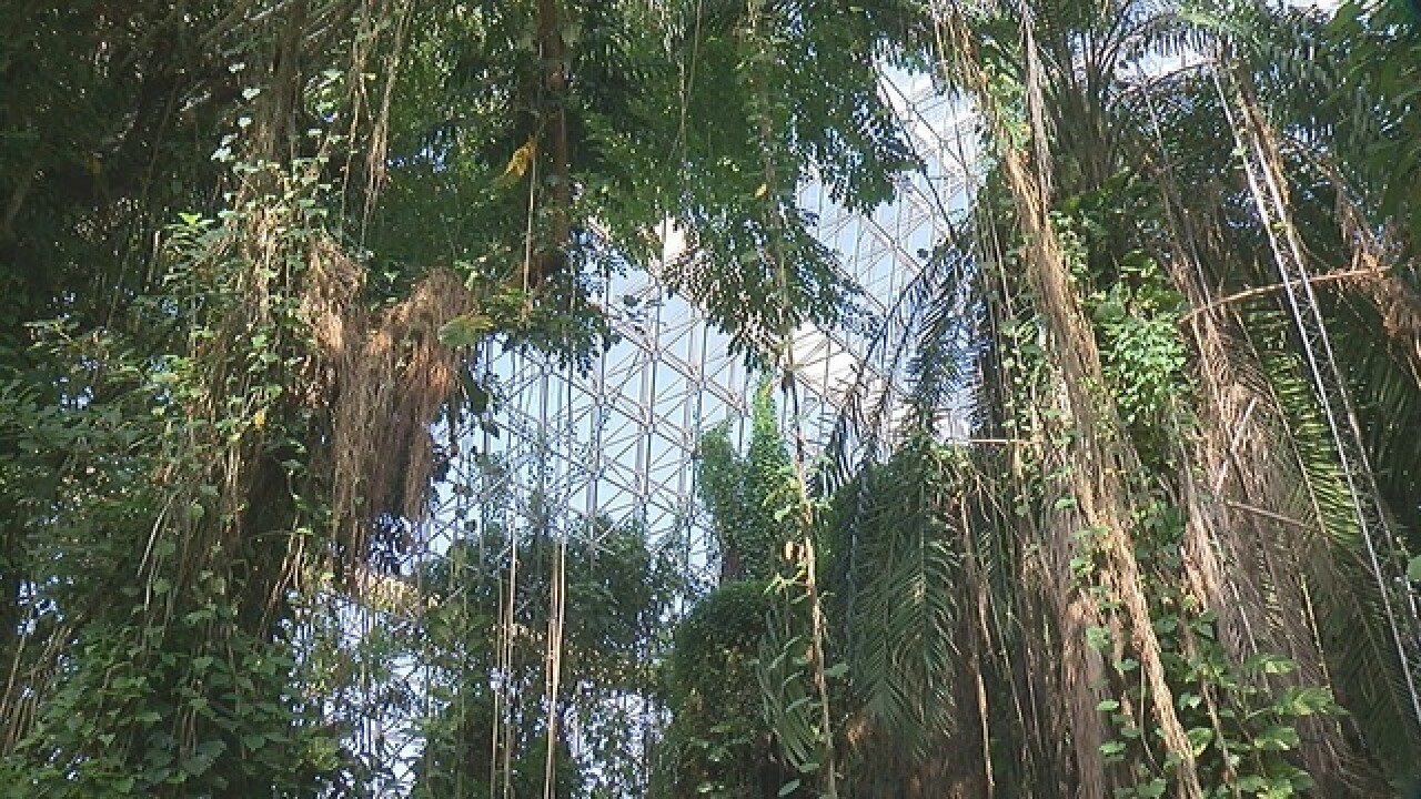 Biosphere 2's environment aids climate research