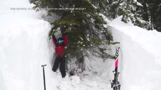 """What are """"tree wells,"""" and why are they so dangerous for skiers?"""