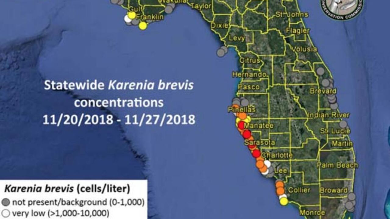 Parts of Southwest Florida seeing more red tide blooms