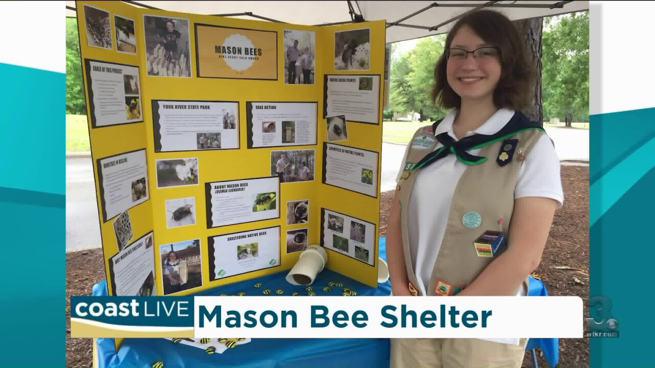 An award-winning Girl Scout who is creating innovative ways to save the bees on Coast Live