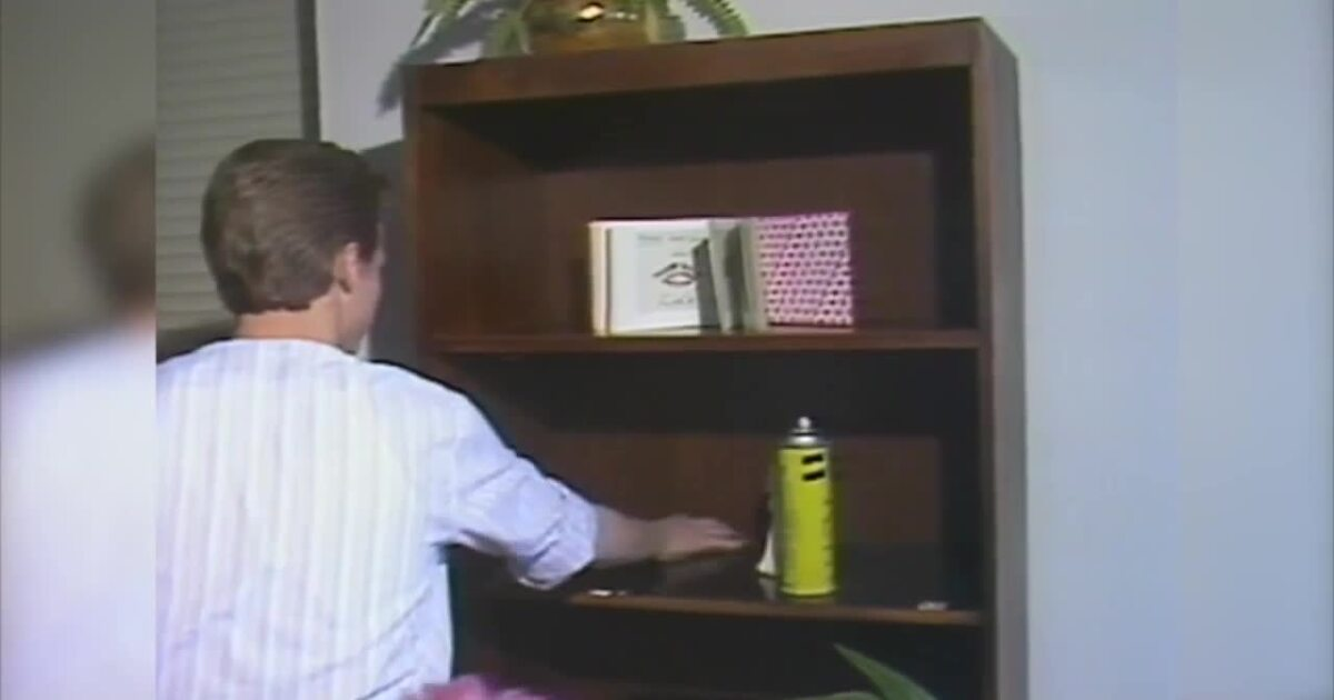 1984: Male Maids Inc. cleans up the competition