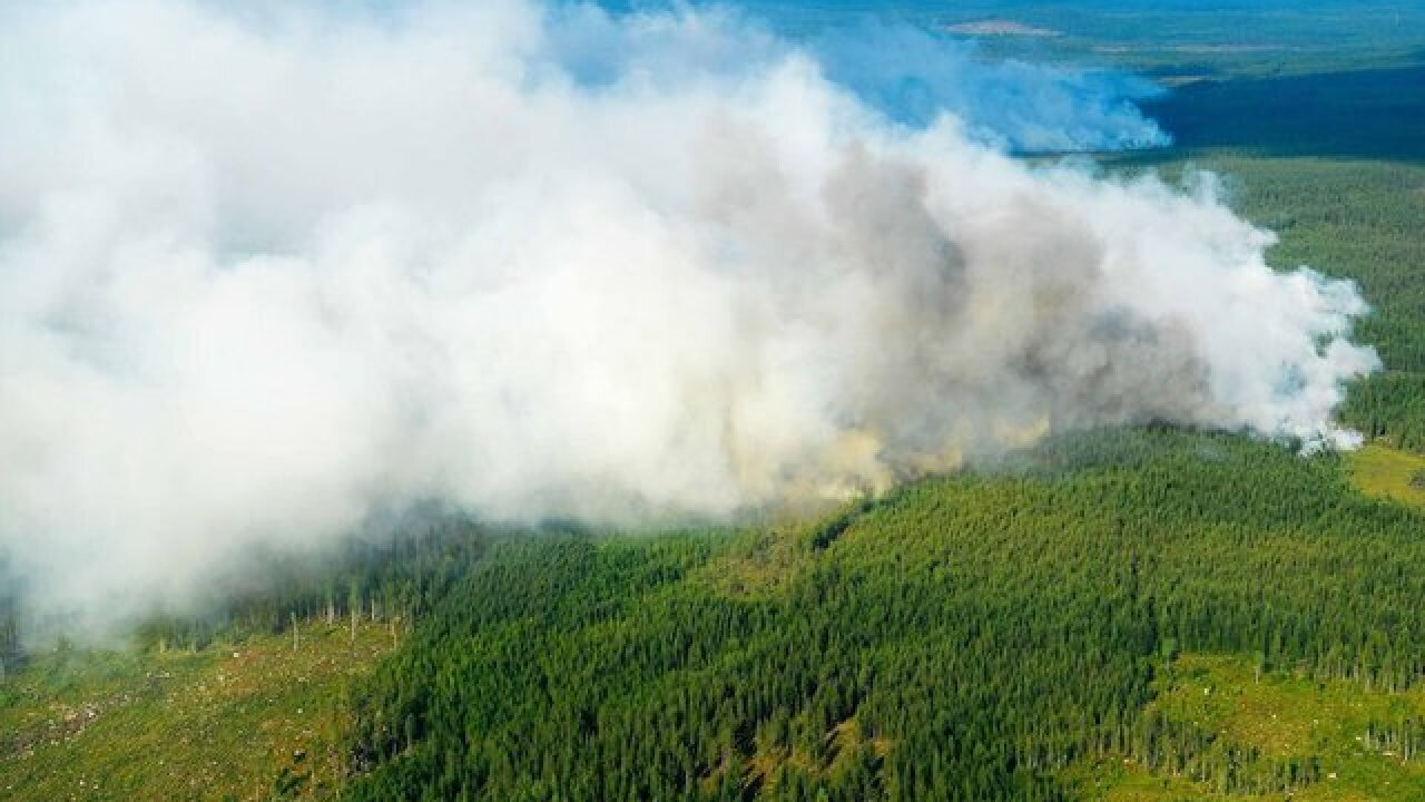 Evacuations ordered in Sweden as fires rage as far north as Arctic Circle