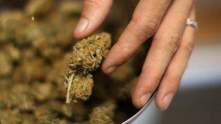 Colorado lawsuit over pot, property values could have broad impacts