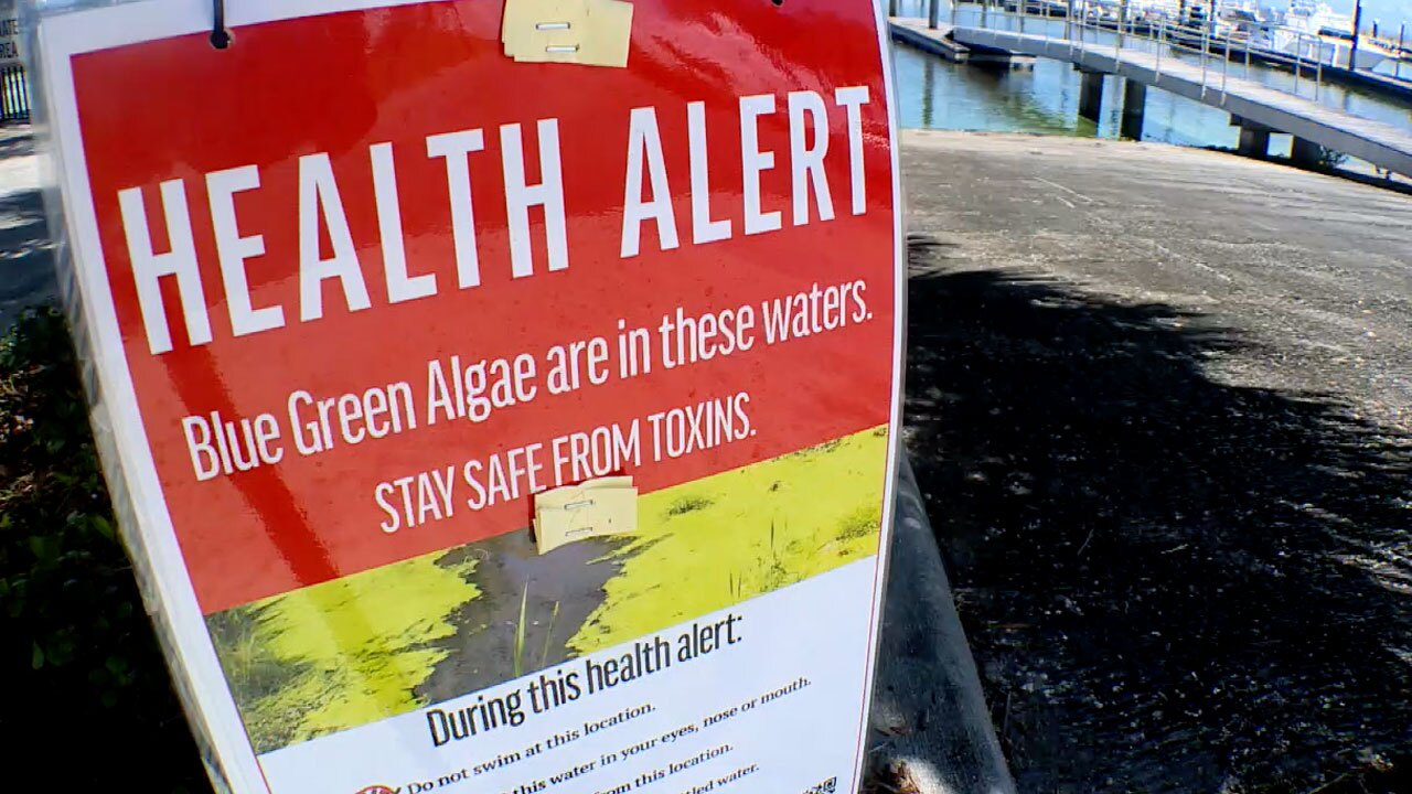 Health alert sign posted at the Pahokee Marina on April 30, 2021, due to toxic algae