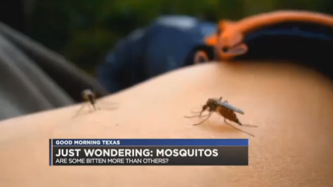 Do Mosquitoes Like To Bite Some People More Than Others